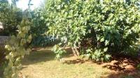 Holiday Home - Apartman s pogledom na vrt - Kornic