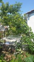Jelena Flat - One-Bedroom Apartment - dubrovnik apartment old city
