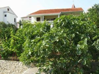 Spajić Apartments - Apartment mit 1 Schlafzimmer, Terrasse und Meerblick - Ferienwohnung Seget Vranjica