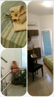 Apartmani Antonia - Apartment with Terrace - Apartments Bibinje