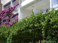Apartments House Ruža - Apartment for 2 adults + 2 child (A1) - Baska Voda