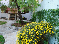 Holiday Accommodation Natura - Apartment for 4 persons (A1) - apartments makarska near sea