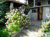 Apartmani uz plažu Danica - Apartman za 2+2 osobe (More) - Stomorska