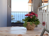 Haus Delfin - Apartment für 4 Personen (A1) - Tucepi
