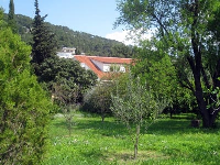 Split Online Appartement Davor - Apartment für 4+1 Person - Ferienwohnung Split