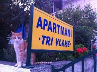 Apartmani uz plažu Tri Vlake - Apartman za 2+1 osobu - Viganj